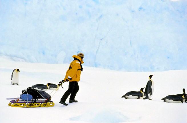 Hiking to Emperor Penguin colonies, Snow Hill, Antarctica