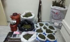 Συνελήφθη 32χρονος για κατοχή και διακίνηση ναρκωτικών ουσιών
