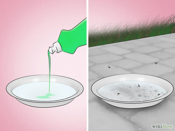 soapy-water-dish-mosquitoes