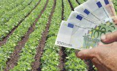 Ξεκινά η ενεργοποίηση δικαιωμάτων για τους παραγωγούς