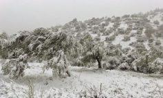 Την άμεση καταγραφή των ζημιών από το χιονιά ζητάει ο Σ. Βαρδάκης