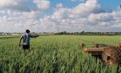 Μελλοντικές επενδύσεις για τον αγρότη στη Βιάννο