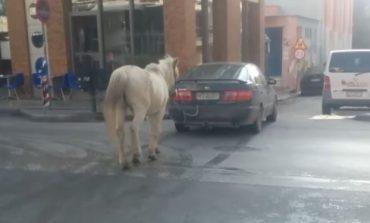 Απίστευτο: Έδεσε στο αυτοκίνητο το άλογο και το πήγε βόλτα στο κέντρο της Θεσσαλονίκης