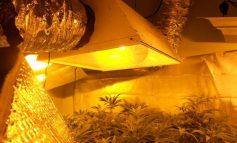 Οργανωμένη επιχείρηση διακίνησης ναρκωτικών στο Ηράκλειο