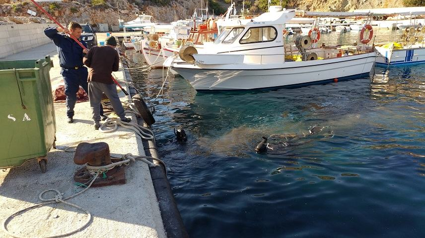 Εθελοντές καθάρισαν το Αλιευτικό Καταφύγιο των Καλών Λιμένων