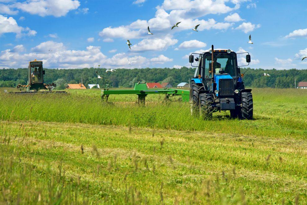 βιολογική καλλιέργεια – αγρότες