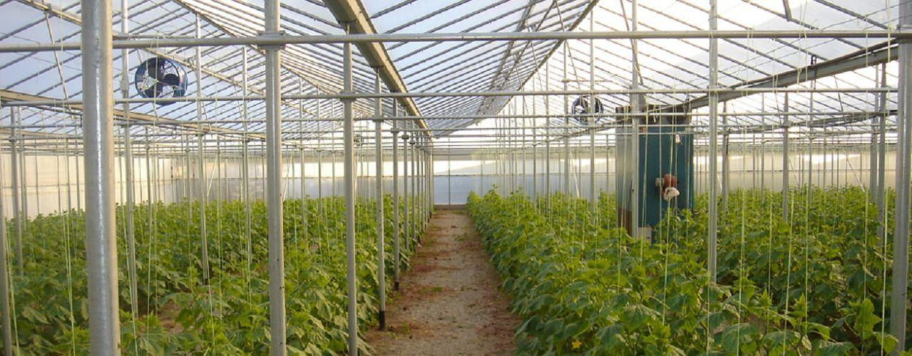 Άρχισε η δράση για την έρευνα στον αγροδιατροφικό τομέα της Κρήτης | Cretanmagazine.gr